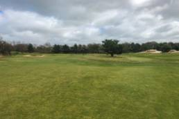 Boom op de fairway bij Goyer Golf & Country Club