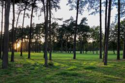 De zon door de bomen op Royal Golf Club du Hainaut
