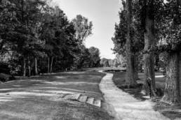 Openbare Golfbaan Kralingen
