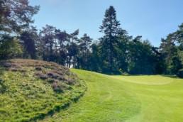 Green hole 15 van Utrechtse Golfclub 'De Pan'