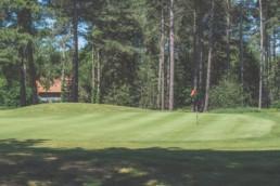 Best Golf