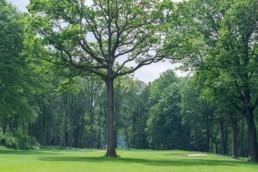 Zuid Limburgse Golf & Country Club Wittem